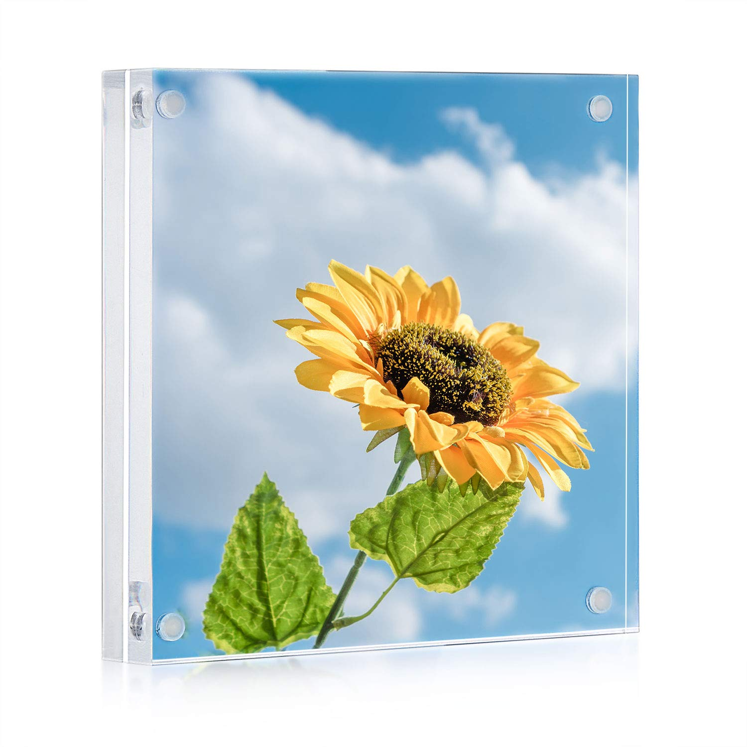 ONE WALL Acrylic Picture Frame 5x5 Inch, Magnetic Clear Photo Frame Free Standing for Tabletop Desktop Display by ONE WALL