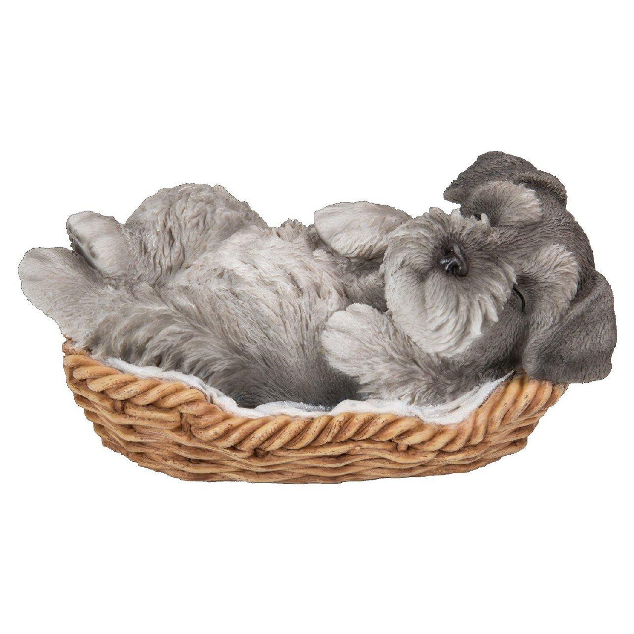 Vivid Arts Pet pal Schnauzer Puppy dans un panier
