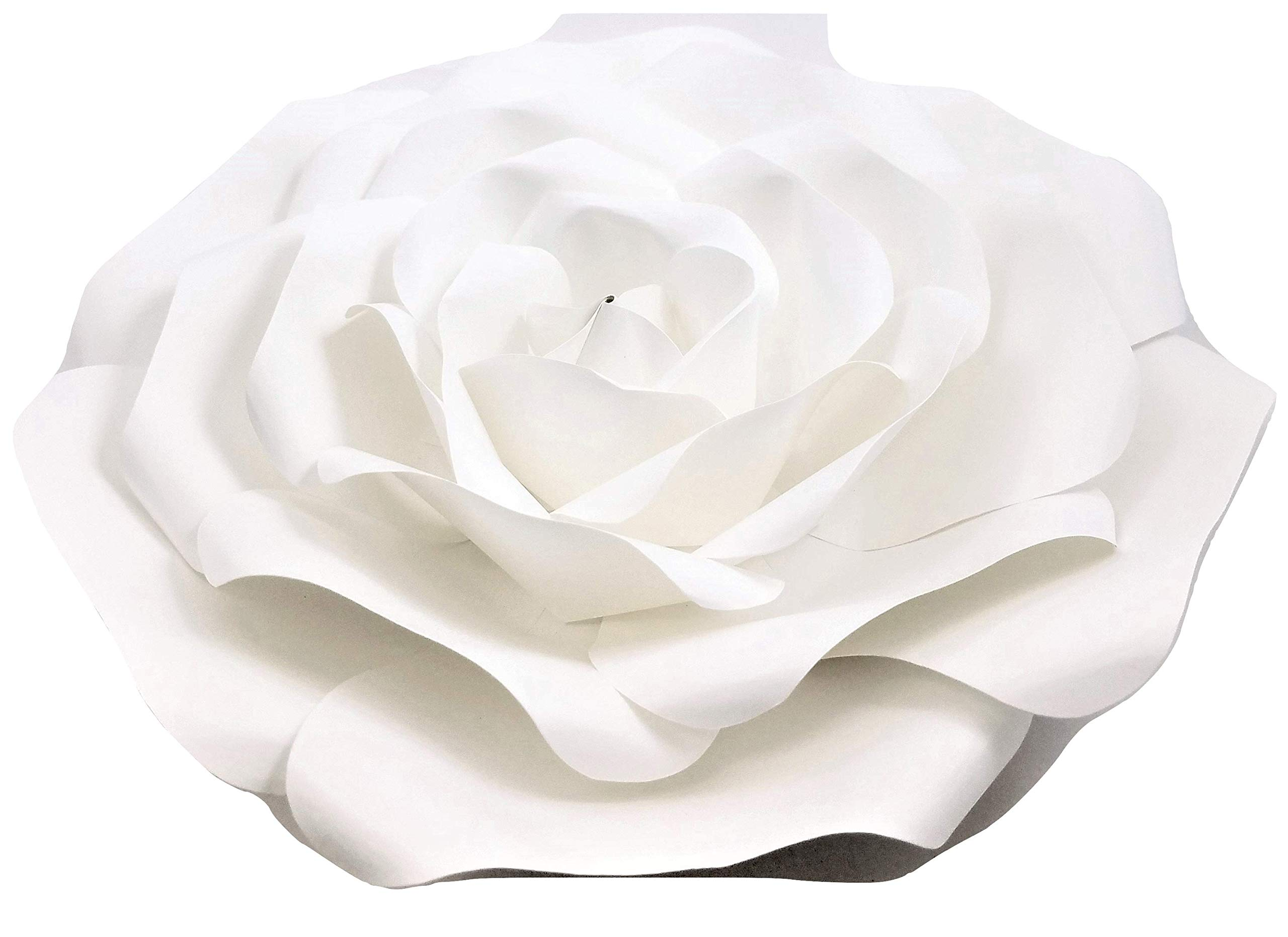Amazon Large Paper Flower 30cm 12 Inch Wedding Photography