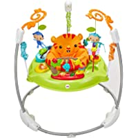 Fisher-Price Jumperoo Baby Bouncer (Multicolour)
