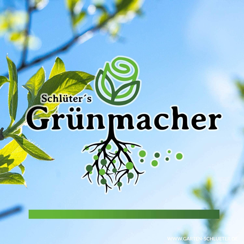 Schl/üters Gr/ünmacher 100g Nat/ürliches Pflanzenst/ärkungsmittel f/ür mehr Ertrag und Gesundheit