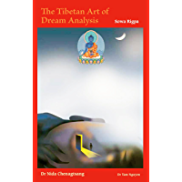The Tibetan Art of Dream Analysis: A journey through space and time (English Edition)
