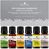 Plant Therapy Top 6 Organic Synergies Set - Essential Oil Blends for Sleep, Calm, Muscle Relief, Energy, Immunity, 100…