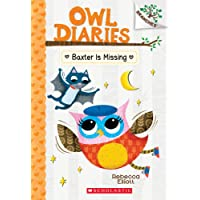 Baxter Is Missing (Owl Diaries, Band 6)