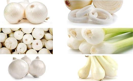 Cebolla Blanca - Conjunto de Semillas de 6 Variedades de Plantas ...