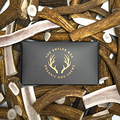 The Antler Box-Premium Elk Antler Dog Chews (1 lb Bulk Pack) -Both Whole  and Split Antlers-Long Lasting Organic Chewing Toys Sourced from Naturally