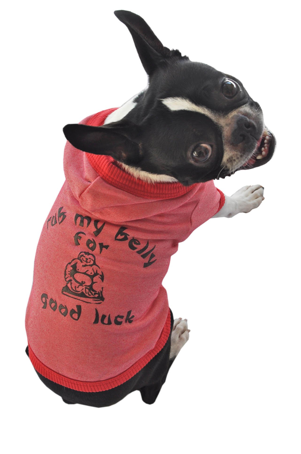 Ruff Ruff and Meow Dog Hoodie, Rub My Belly for Good Luck, Red, Large