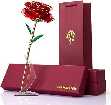 Rose Plaqu/é Or 24K F/ête des M/ères Mariage Anniversaire Rose Dor/ée Rouge Fleur Eternelle avec Support Le Meilleur Cadeau pour Saint Valentin Rose Eternelle Romantique