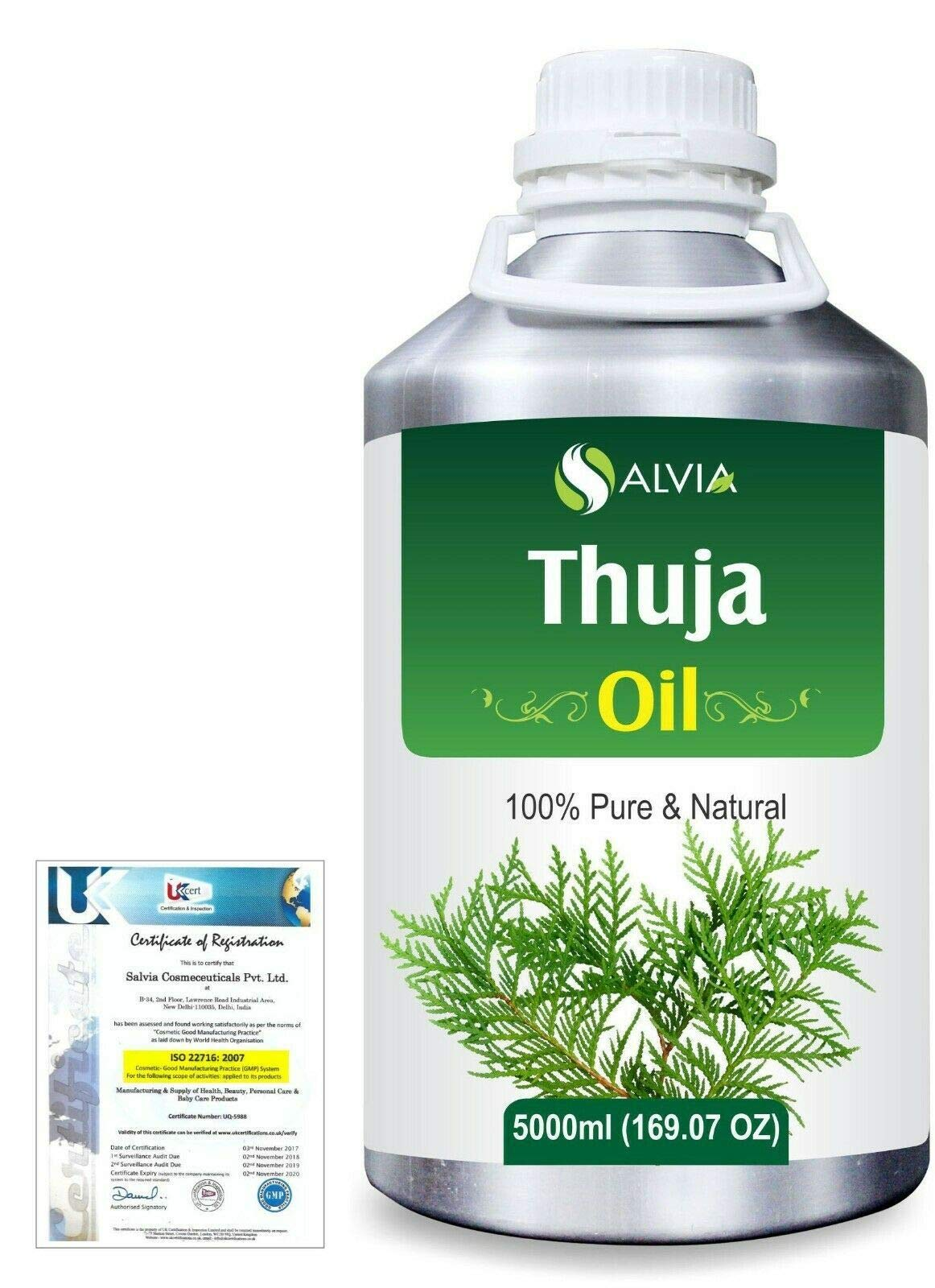 Thuja (Thuja Orientali) Pure Natural Aromatherapy Therapeutic Uncut Undiluted Essential Oil 5000ml/169 fl. oz. Express Shipping