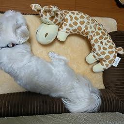 Amazon ペット ソファー モコモコ クッション スクエア 安眠 ベッド 犬 猫 寝台 四季通用 マット ぐっすり眠る 休憩所 洗える かわいい ござ 付き 寝床 ブラウン S Hoyou ベッド クッション 通販