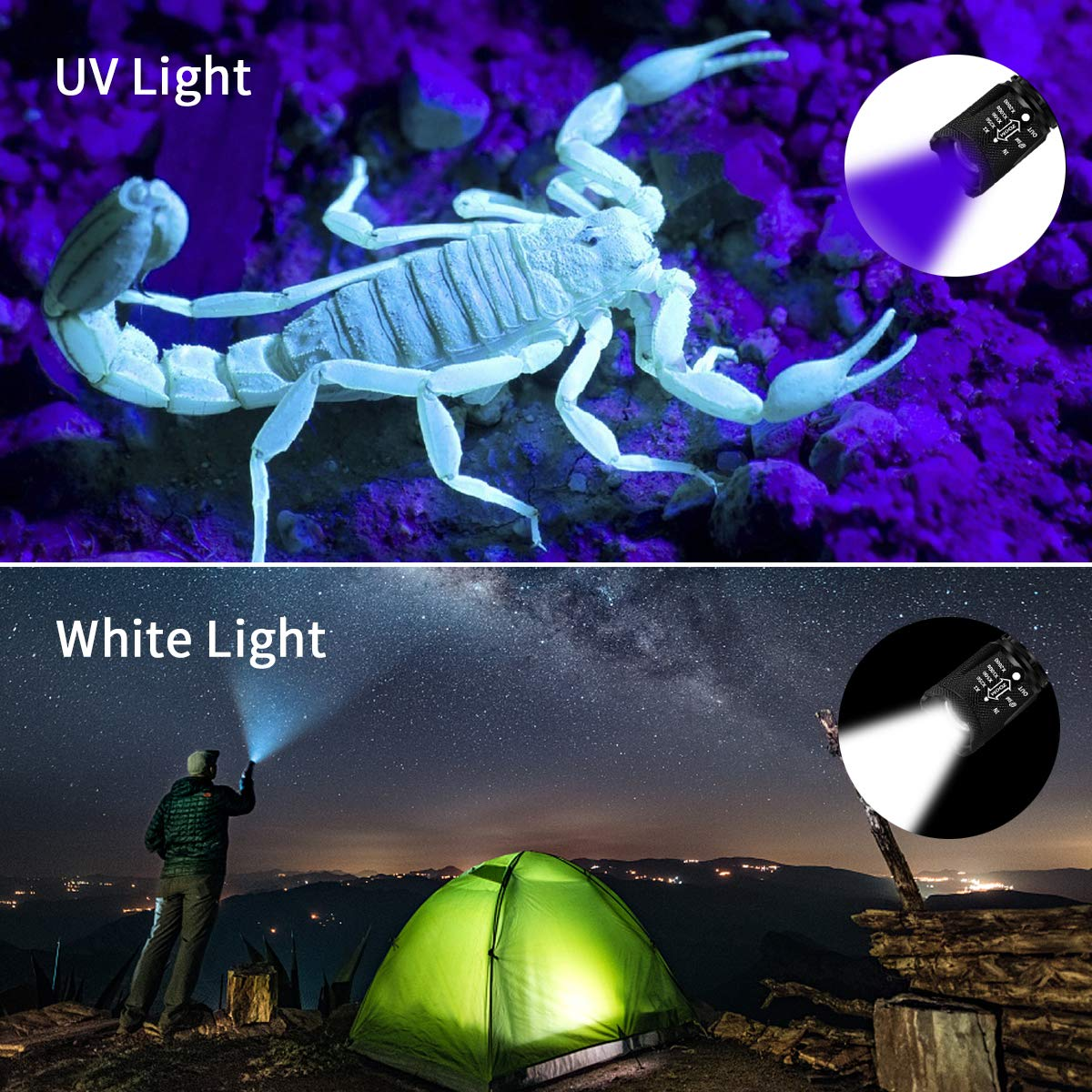 2 Pack UV Flashlight with Batteries, 2 in 1 Black Light & Tactical Light Flashlight Mini Ultraviolet Blacklight Urine Detector for Cats, Pet Stains, Bed Bugs, Scorpions