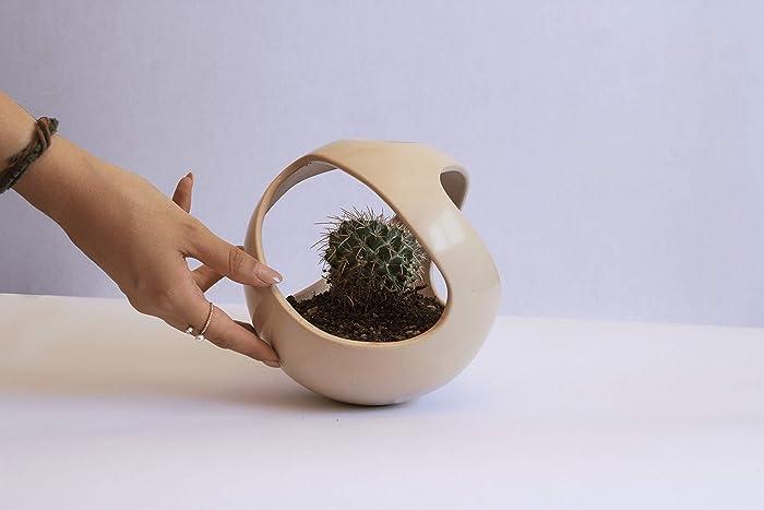 Macetas para cactushttps://amzn.to/2DrluQA