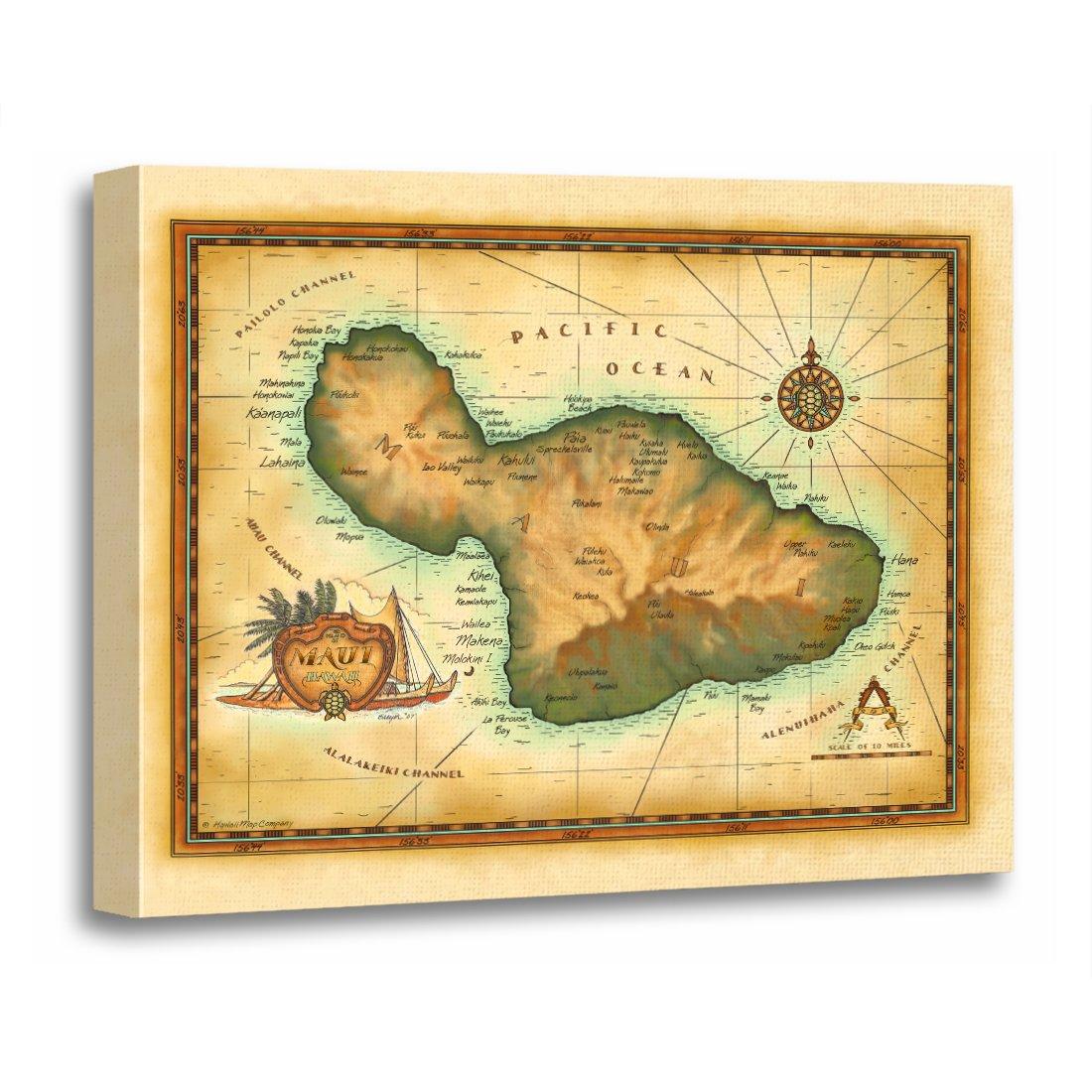 Amazon.com: TORASS Canvas Wall Art Print Hawaii Maui Map Hawaiian ...