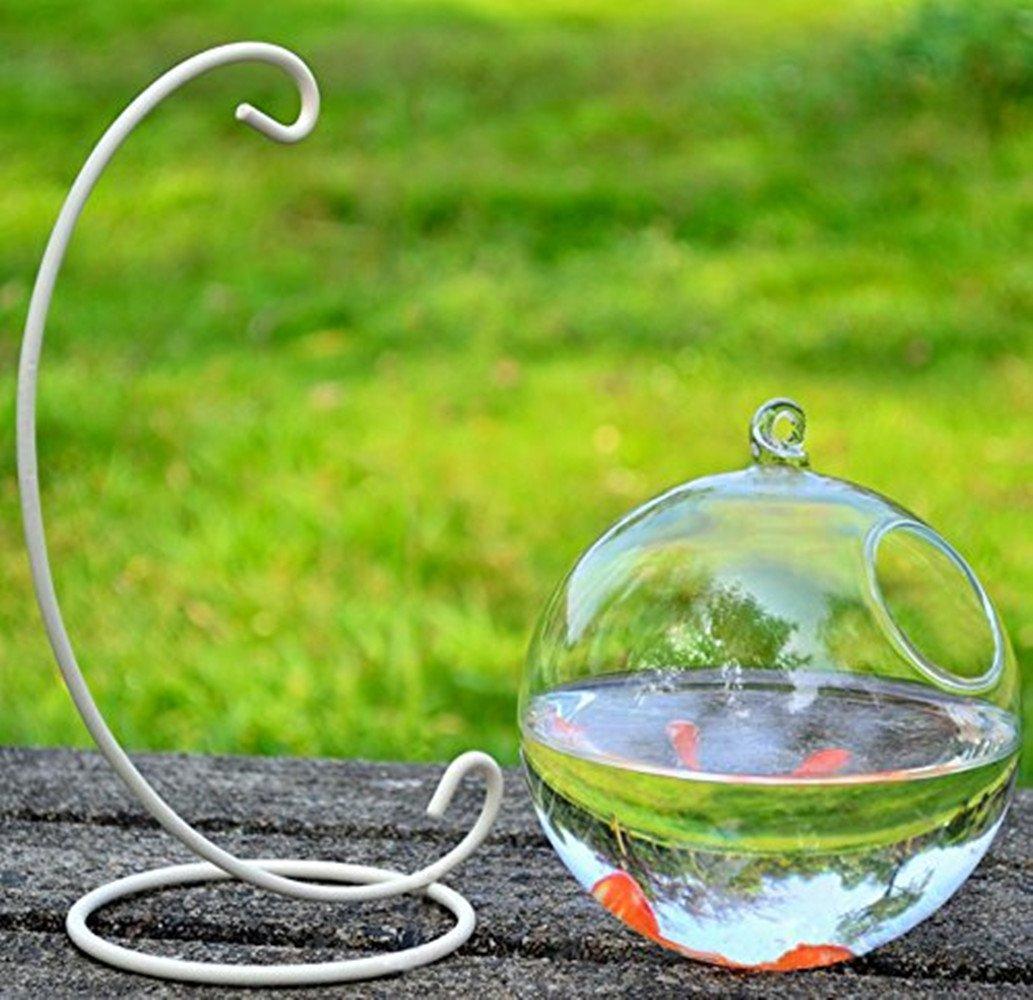 Jarrón de cristal peces tanque transparente esférica pecera (incluir el soporte + cuenco de cristal): Amazon.es: Productos para mascotas