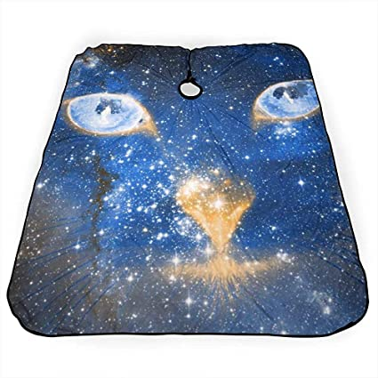 Capa De Corte De Pelo Blue Iris Light Cosmic Kitten Barber ...