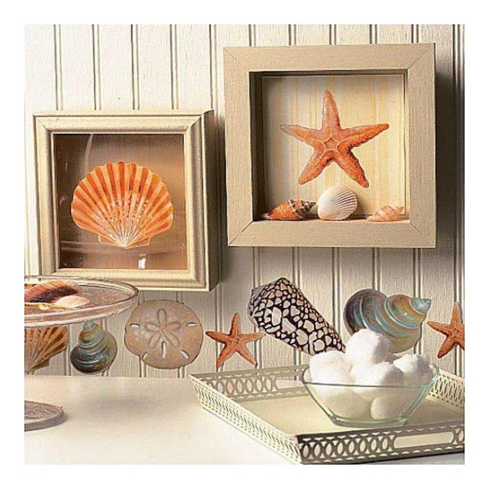 Merveilleux Amazon.com: WALLIES SHELLS Wall Stickers 24 Decals Bathroom DECORATION  Seashells Ocean Beach U.S Top SelleR!: Home U0026 Kitchen