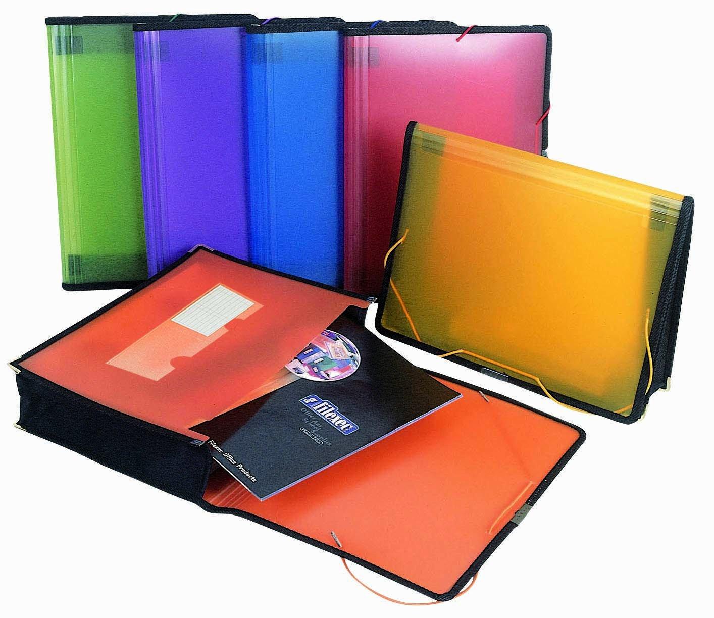 Filexec Single Pocket Expanding File, Letter, Elastic Closure, Assorted, Pack of 6 (50125-3429) by Filexec