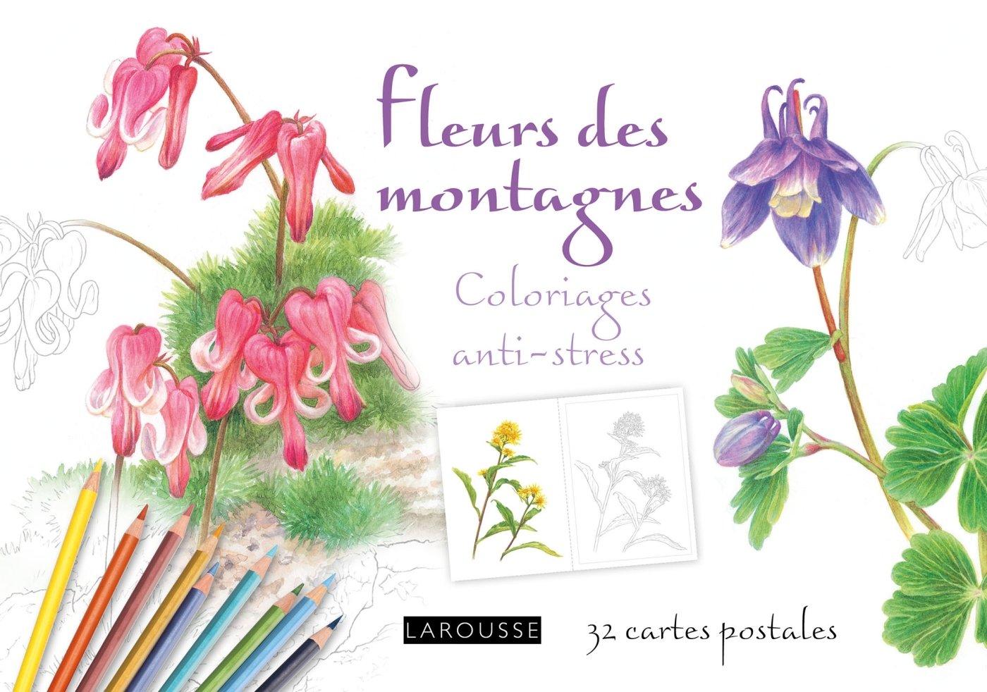 Amazon cartes postales Fleurs de montagne coloriages anti stess Collectif Livres