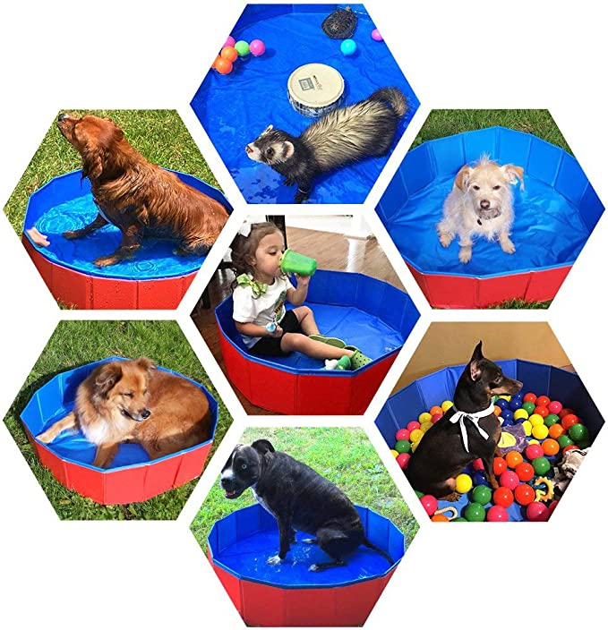 YQQY Plegable Perro Jugar Billar Perro Gato Natación Baño Animal de Compañía Niño Baño Integrado en pleno Aire: Amazon.es: Productos para mascotas