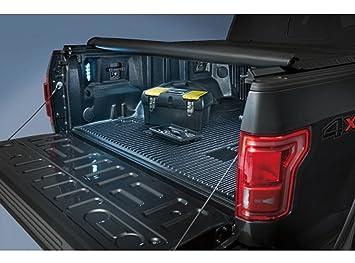 Genuine Ford FL3Z-13E754-A LED Bed Light Kit, Rear on