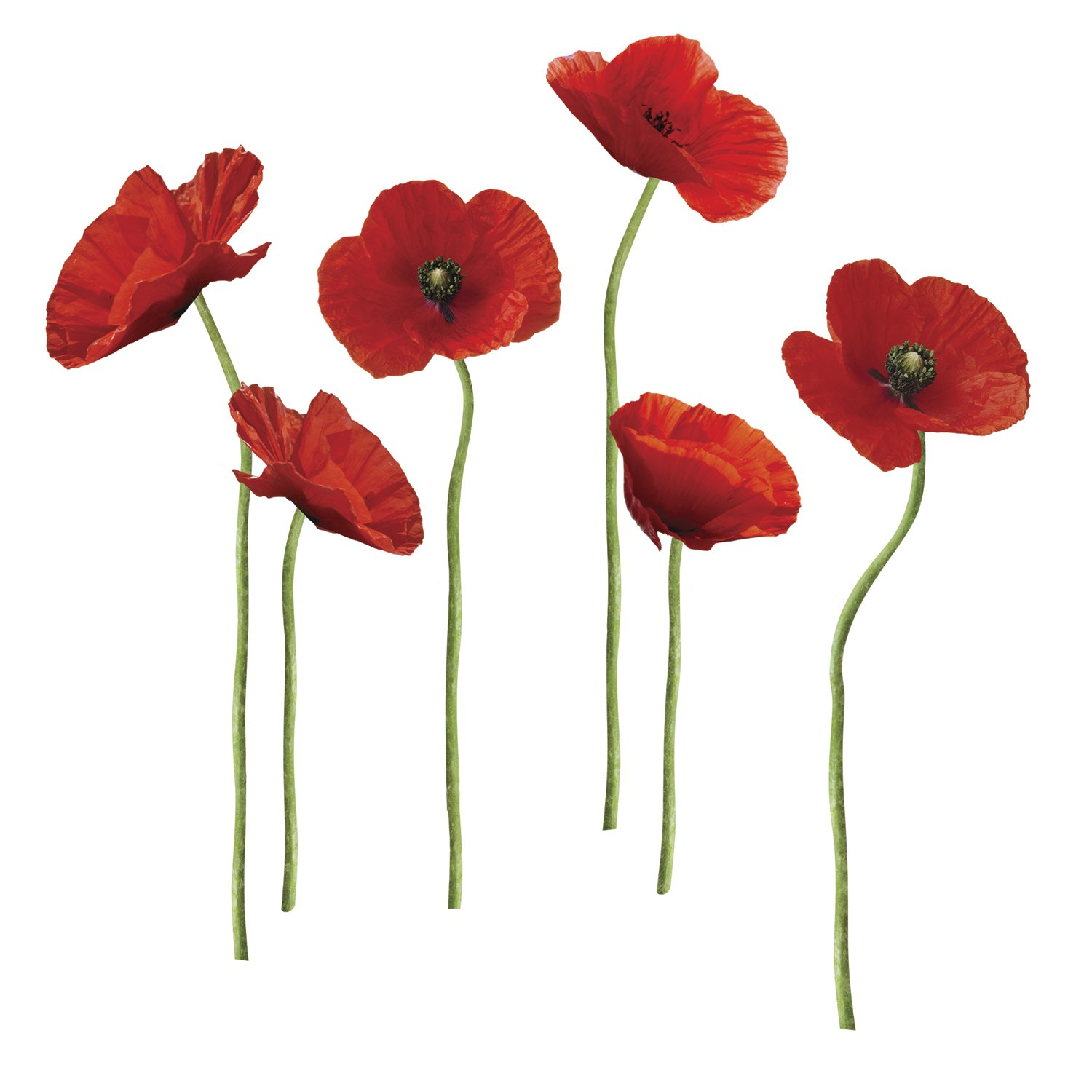 Roommates Repositionable Wall Stickers Poppies At Play Amazon