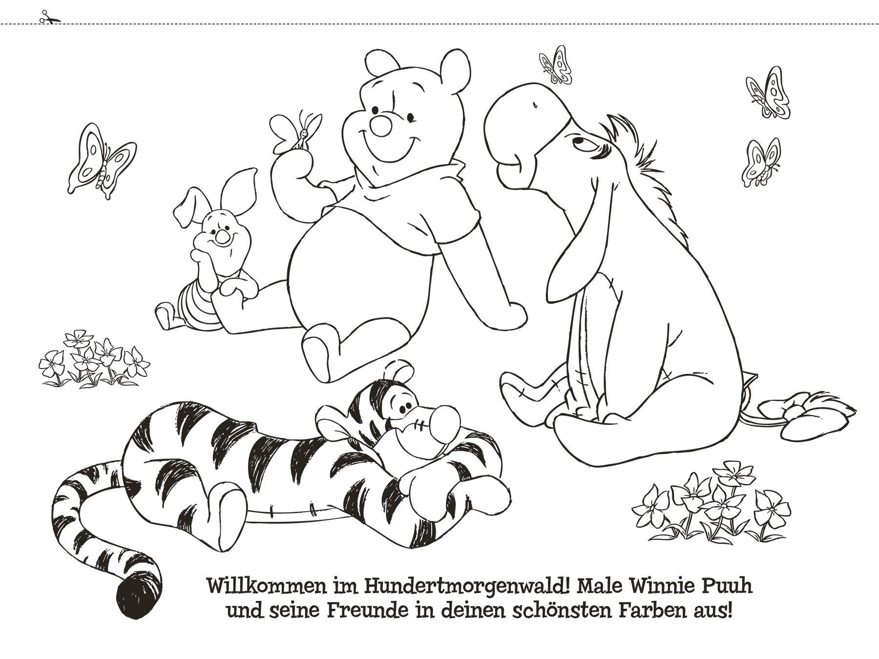Disney Winnie Puuh: Mein erster Malspaß : Panini: Amazon.de: Bücher