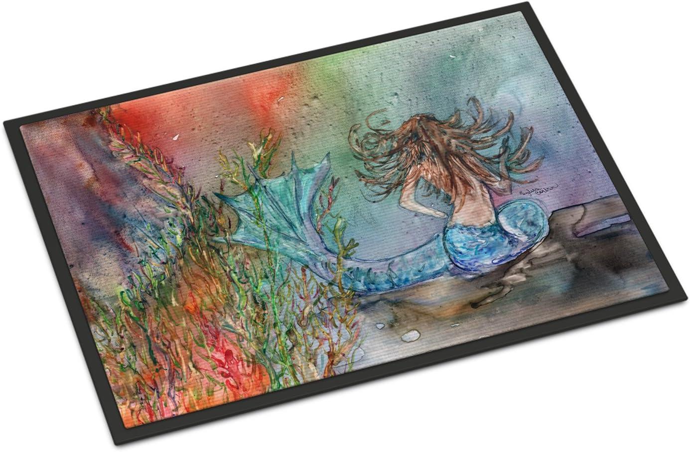 Caroline s Treasures DND0133MAT Waterlilies by Neil Drury Indoor or Outdoor Mat 18×27, 18H X 27W, Multicolor