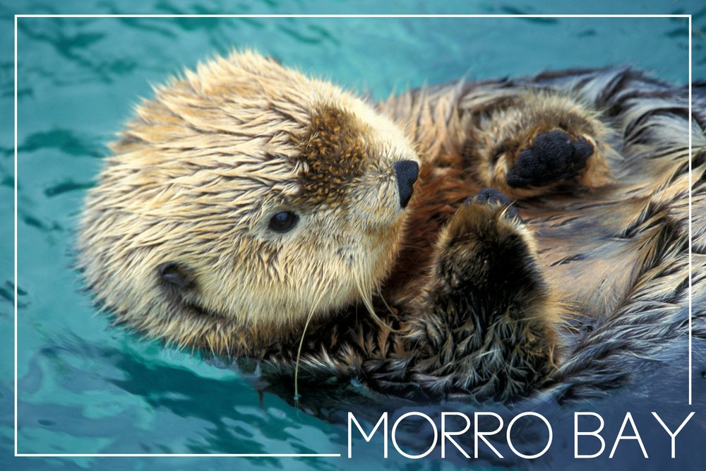 Morro Bay , California – Sea Otter写真 36 x 54 Giclee Print LANT-50218-36x54 36 x 54 Giclee Print  B017EACSX0