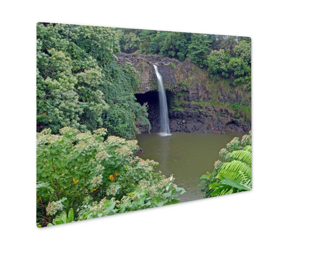 Ashley GicleeリモートWaterfall In Rainforestハワイ、壁アート写真印刷メタルのパネル、ag6407773 16x20, Float Frame 6407773-AGMP1-FC1620 B07CZZ3LN7  カラー 16x20, Float Frame