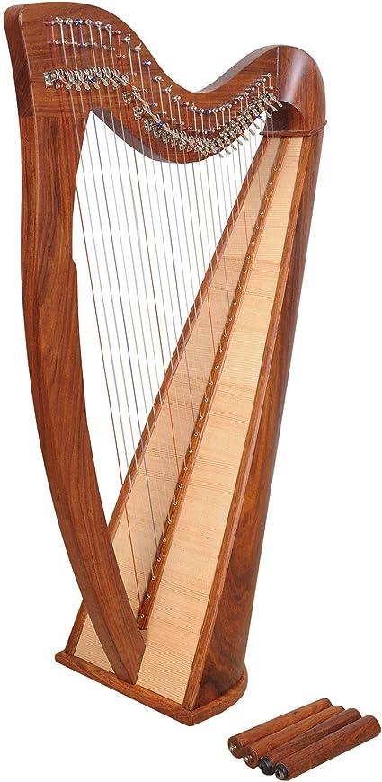 Arpa In Legno Di Palissandro 28 Corde Arpa Celtica Arpa Irlandese Amazon It Strumenti Musicali E Dj