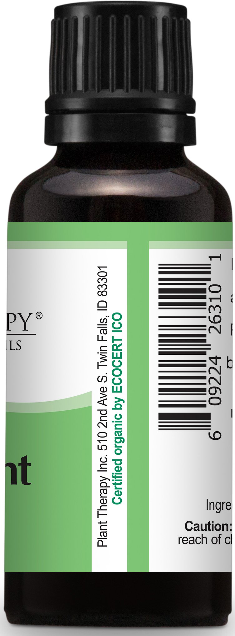 Plant Therapy USDA Certified Organic Peppermint Essential Oil. 100% Pure, Undiluted, Therapeutic Grade. 30 mL (1 Ounce). by Plant Therapy (Image #5)