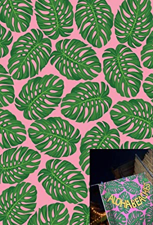 Amazon Com 5x7ft Tropical Leaves Photography Backdrop Banana Palm Photo Backdrop For Party Pictures Youtube Video Baby Shower W 804 Camera Photo No need to register, buy now! 5x7ft tropical leaves photography
