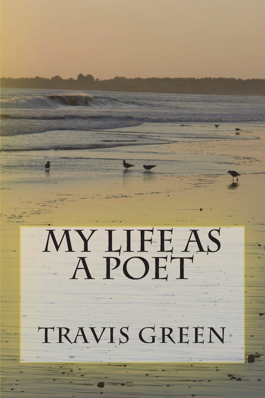 Download My Life as a Poet PDF
