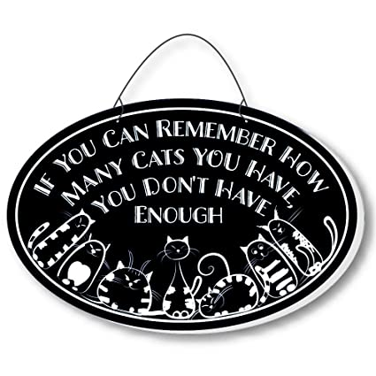 Amazon Cool Cats Cat Gang Oval Laser Etched 3 In 1 Plaques Not