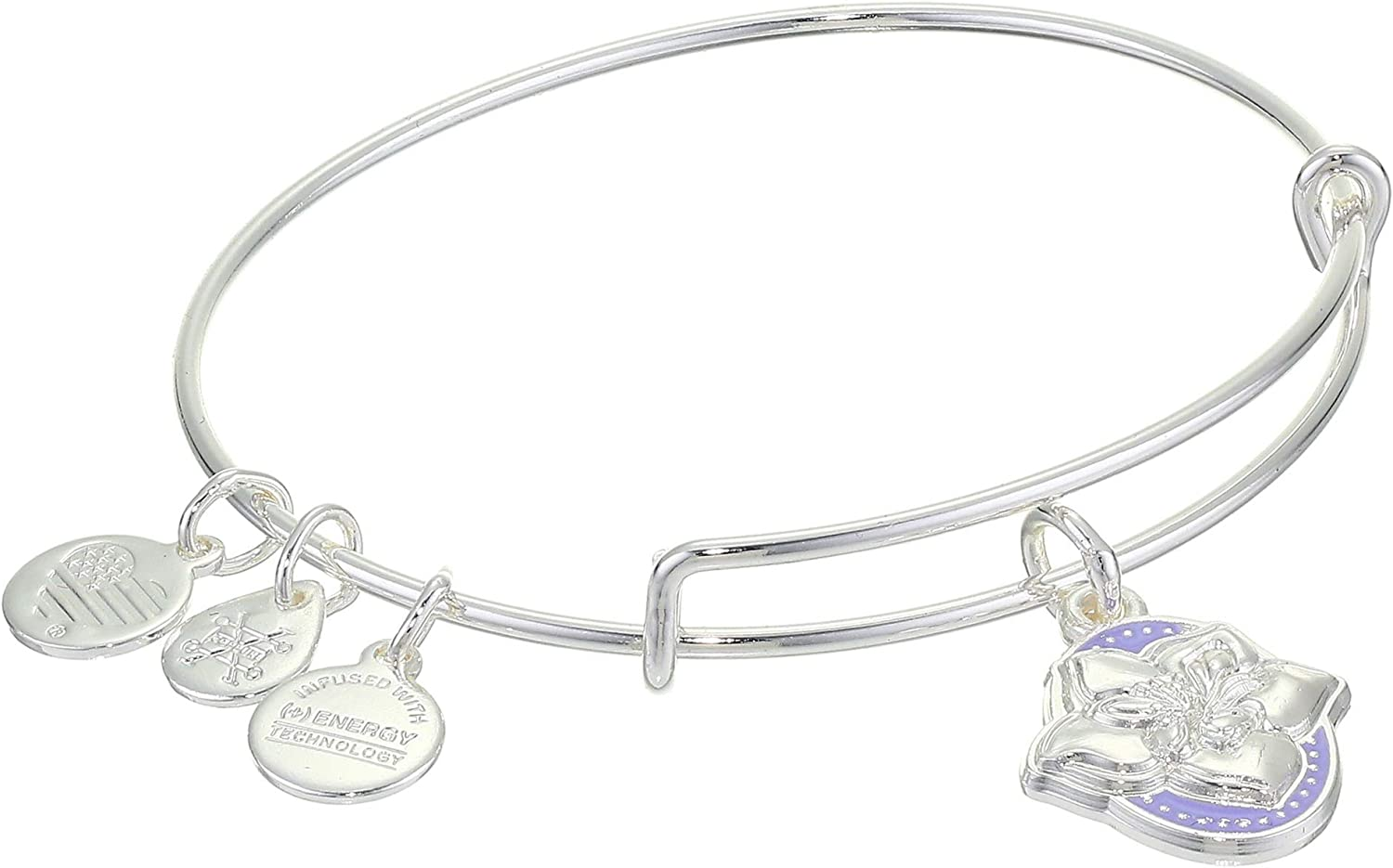 Alex and Ani Color Infusion Bangle Bracelet Silver/Wildflower One Size, A20EBSP04SS, Shiny Silver