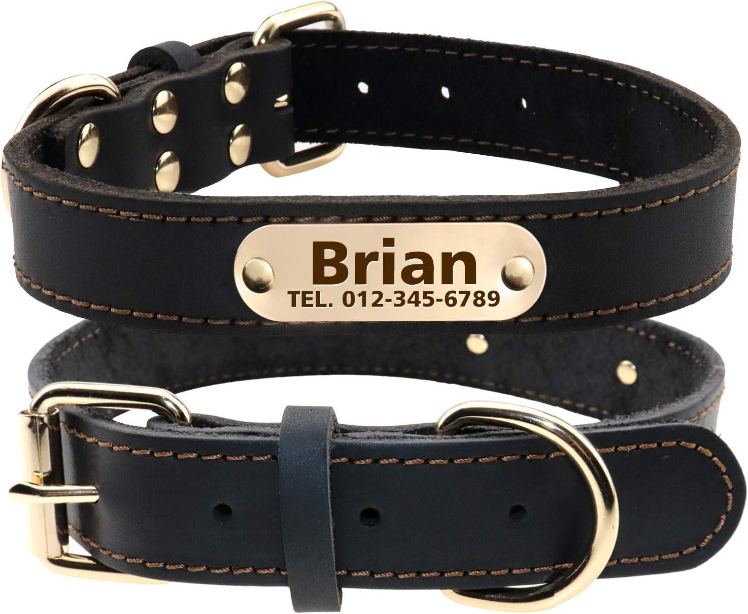 Customizable Leather Dog Collar