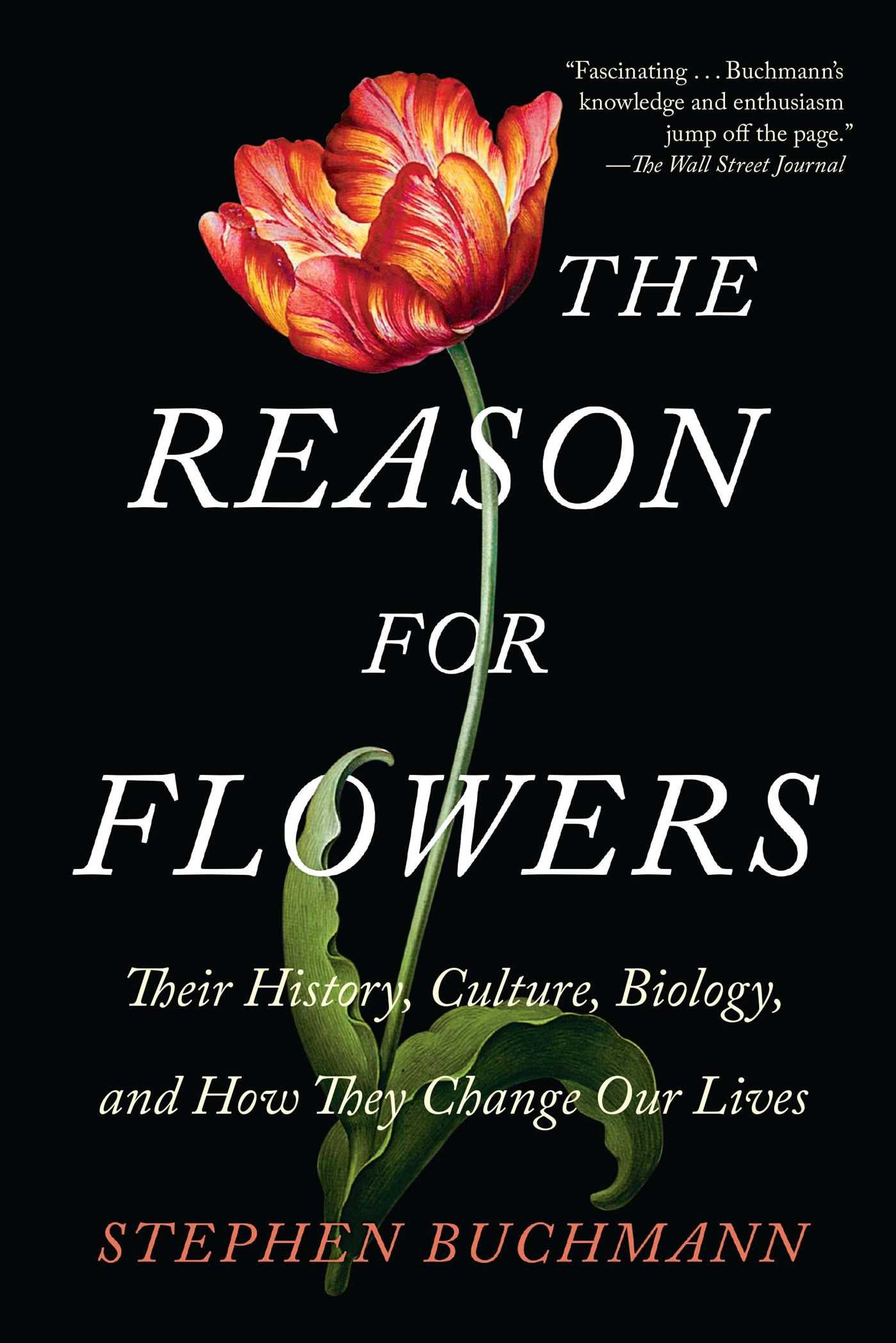 The reason for flowers their history culture biology and how the reason for flowers their history culture biology and how they change our lives stephen buchmann 9781476755533 amazon books fandeluxe Images