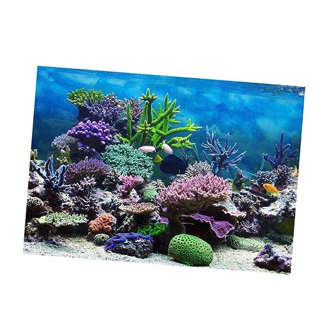 perfk Pegatina de Tanque de Peces Duradero Flexible Ajustable Cómodo de Usar - Coral M: Amazon.es: Hogar