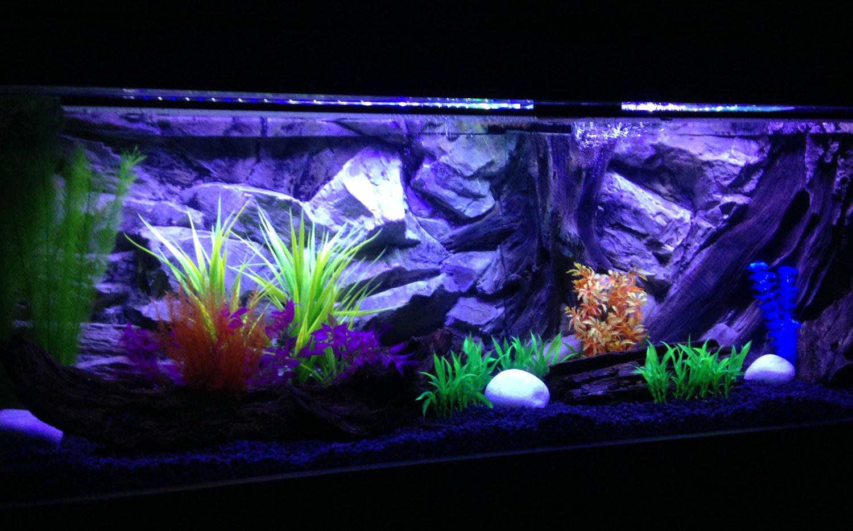 Aqua Maniac - Fondo de base para acuario 3D, polirresina (no ...