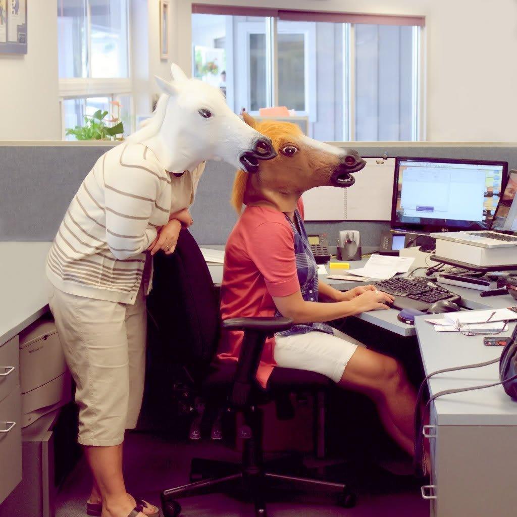 Amazon.com: Kingmys Novelty Creepy Horse Halloween Mask Extremely ...
