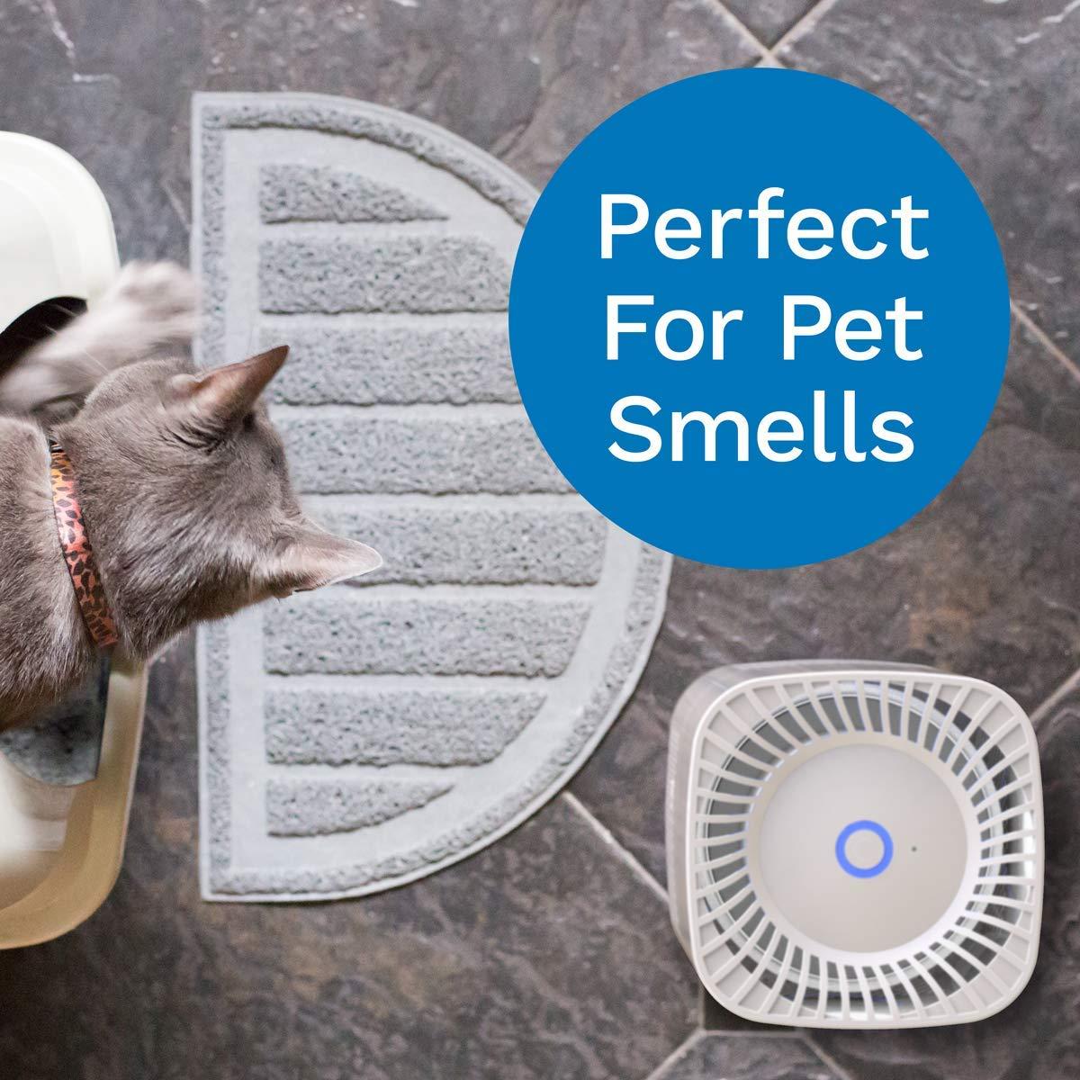 IRIVER BLANK Purificateur dair Ozoniseur dair pour D/ésodorisant Maison G/én/érateur Dozone Ioniseur St/érilisation Filtre Germicide D/ésinfection Salle Blanche