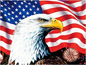 S SNUOY Paint by Number Kits Full Drill Eagle Diamond Painting American Flag DIY 5D Diamond Art by Number Kits for Adults 30X40CM Resin Embroidery Arts Craft for Home Decor Paint with Diamonds Kit