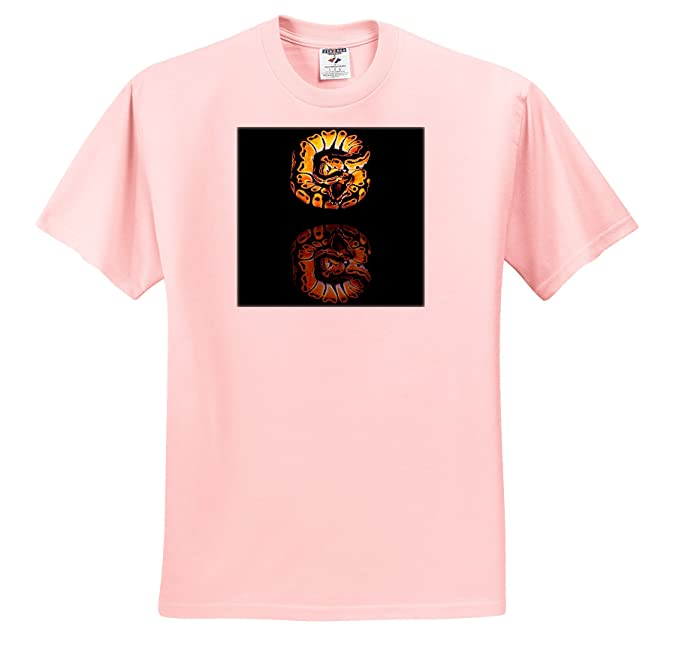 1ecac013 Image Unavailable. Image not available for. Color: 3dRose Snakes - Ball  Python - T-Shirts - Adult ...