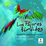 Los Pajaros Perdidos : The South American Project