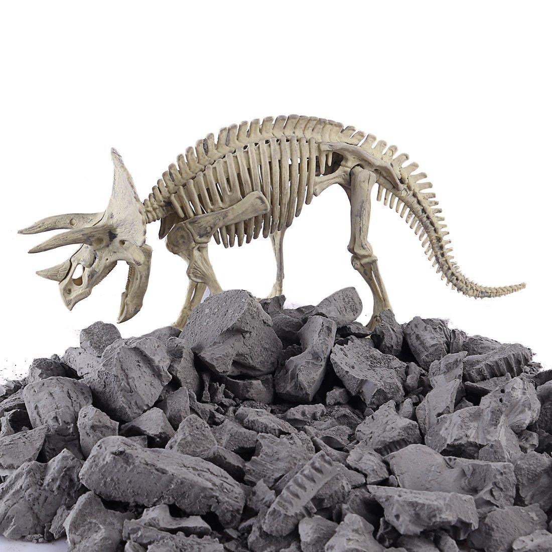 DYFO Ausgrabungsset Dinosaurier Skelett Graben Entdeckung Spielzeu Ideal f/ür Kinder P/ädagogische und Geschenk-Spinosaurus