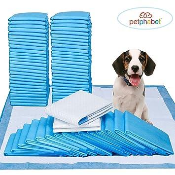 Alfombra para educadores para perros Petphabet Educator Alfombra Bambú para perros Puppies 56 x 58cm,