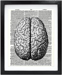 Susie Arts 8X10 Unframed Human Brain Upcycled Vintage Dictionary Art Print Book Art Print Home Decor Wall Art Human Science Anatomy Art V124