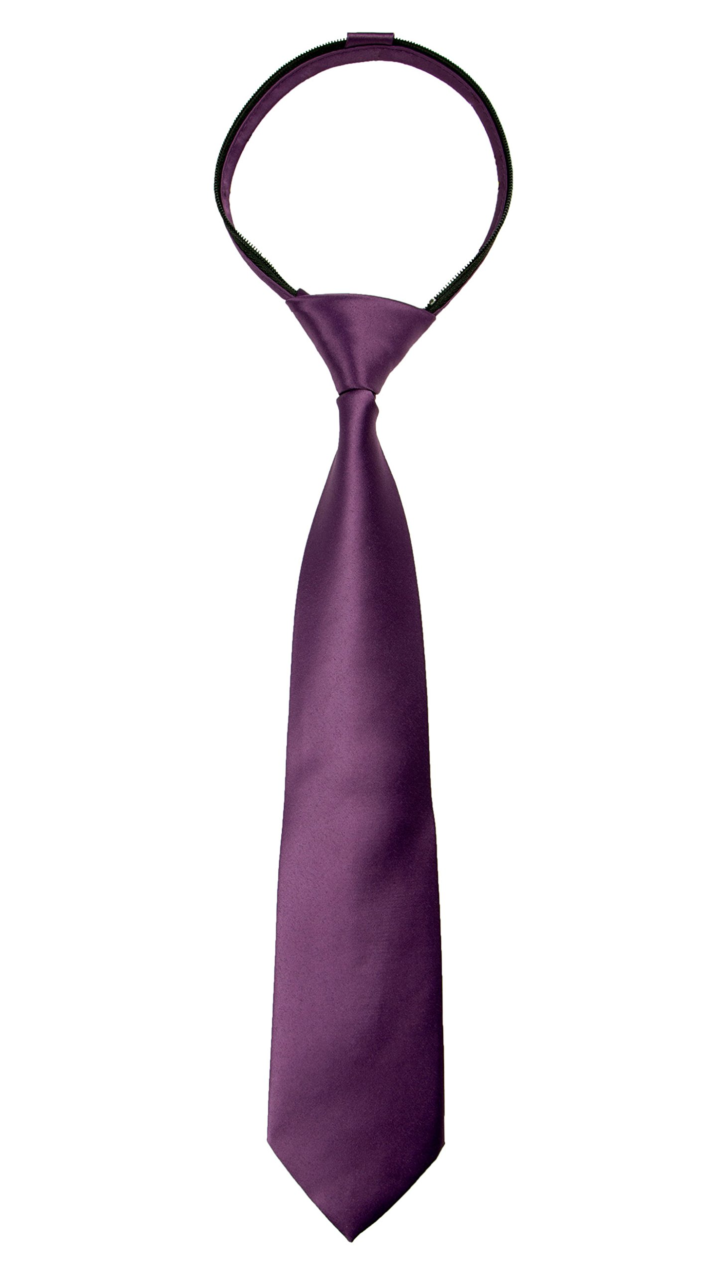 Spring Notion Boys' Satin Zipper Neck Tie with Gift Box X-Large Dusty Purple