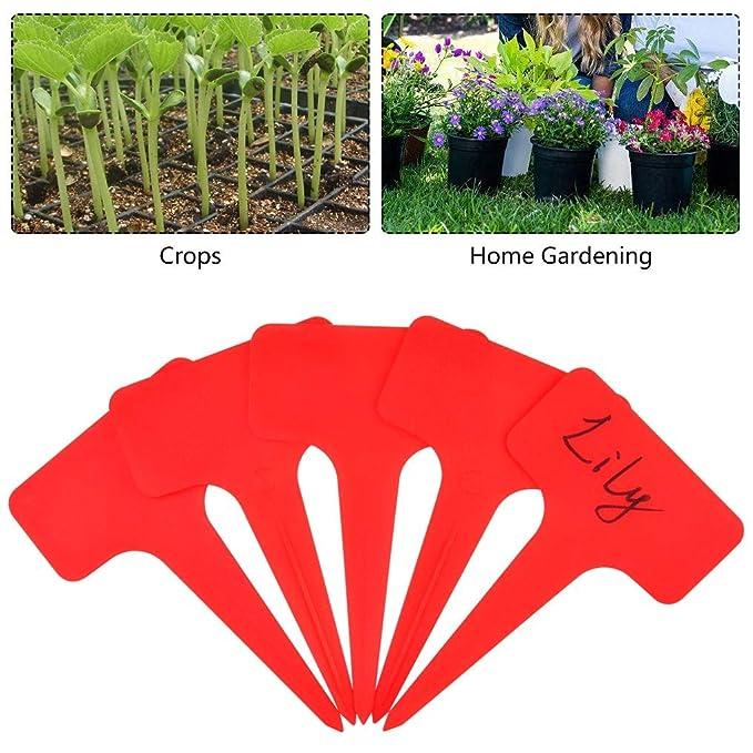 FABSELLER Etiquetas de plástico para Plantas, de la Marca, 6 x 10 ...