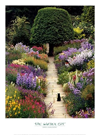 Amazon.com: The Garden Cat By Greg Gawlowski 16x20 Art Print Poster Art  Poster Print By Greg Gawlowski, 18x24: Posters U0026 Prints
